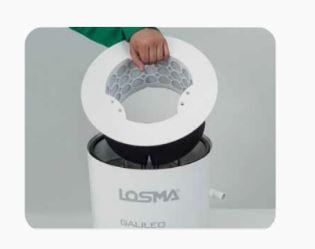 losma6